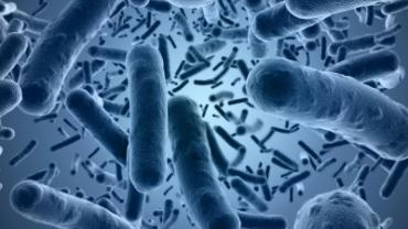 Biofilms and Resistance   Designs for Health