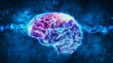 Brain Carnitine Deficiency Causes >> Study Shows Acetyl L Carnitine Levels Are Decreased In Patients With